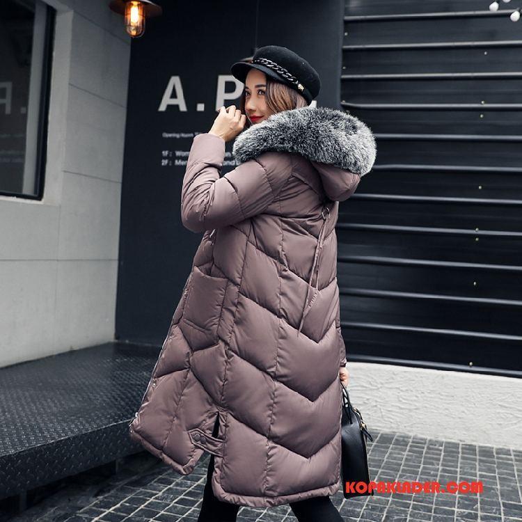 Dam Bomull Jacka Billig Trend Mode Vinter Lång 2018 Rosa