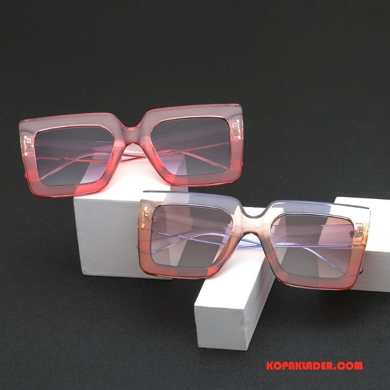 Dam Solglasögon Butik Rektangel Europa Kvinna Trend Transparent Pulver