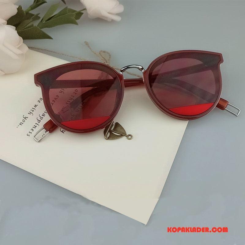 Dam Solglasögon Köpa Kvinna Ny Personlighet Allt Matchar Multicolor Purpur Röd