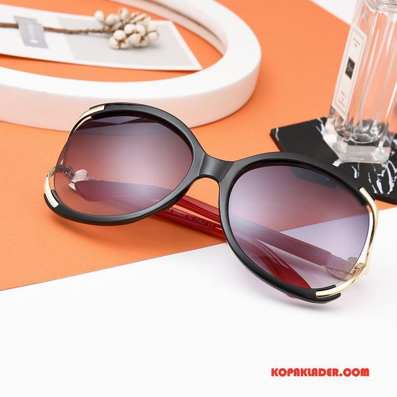 Dam Solglasögon På Rea Kvinna Trend Stor Europa Mode